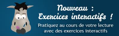 Des exercices interactifs sont proposés à la fin de certains chapitres